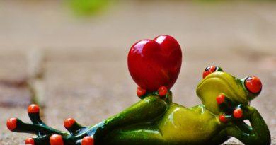 Die große Liebe finden: Speed Dating in Hamburg