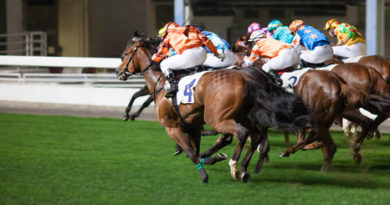 Galopp Derby - Deutsches Derby am 5. Juli 2015