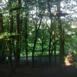 kiekeberg-kletterpark12